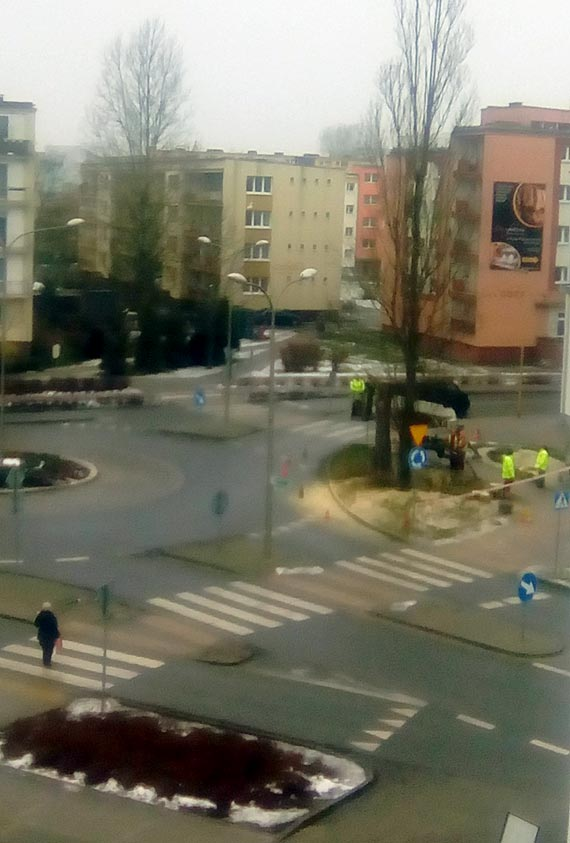 Czytelnik: Mam nadzieje że pożegnamy Pana Żmurkiewicza za te dziesiątki wyciętych drzew które dostarczały nam tlenu