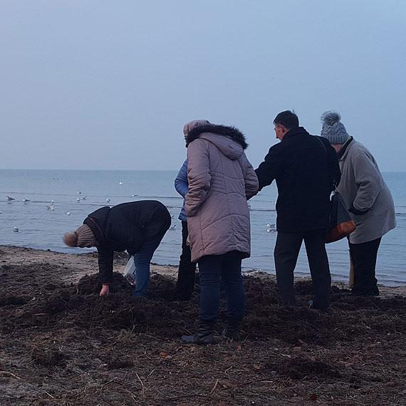Poszukiwacze morskiego złota ruszyli na plażę!