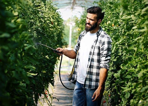 Z myślą o przyszłorocznych plonach - korzyści jesiennych oprysków drzew owocowych