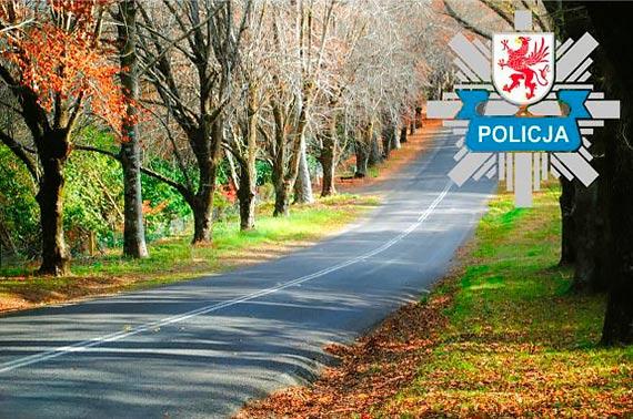 Bezpiecznie na drogach jesienią